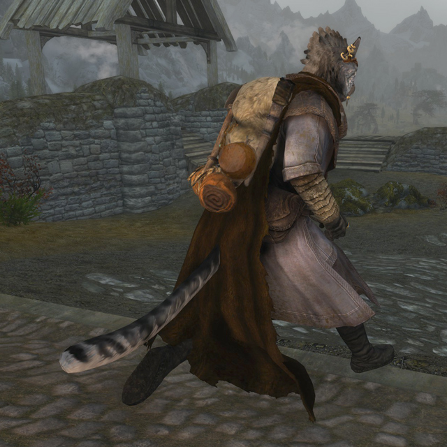 Show Your Tail With Campfire Cloak In Skyrim